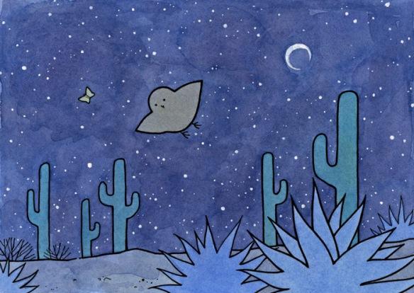 Feeling lost, a moth chasing the moon…a predator following close.